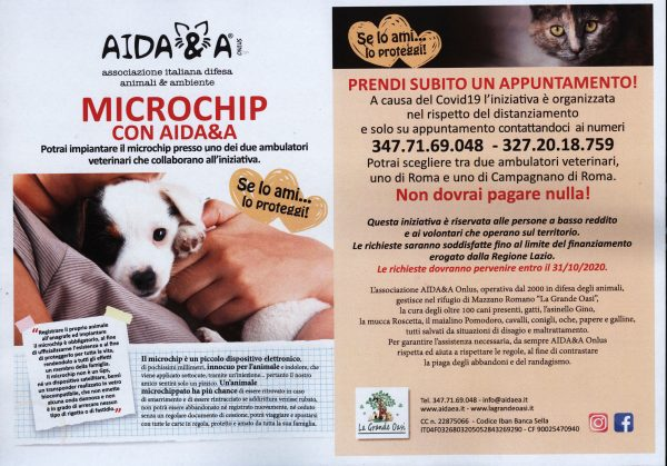 locandina microchip con Aida&a 001
