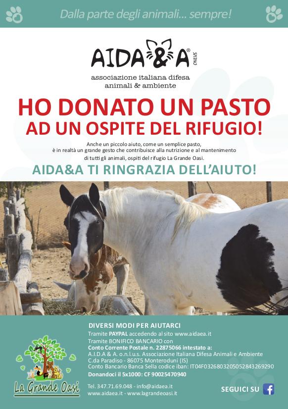 Locandina Aidaea Cavallo A5