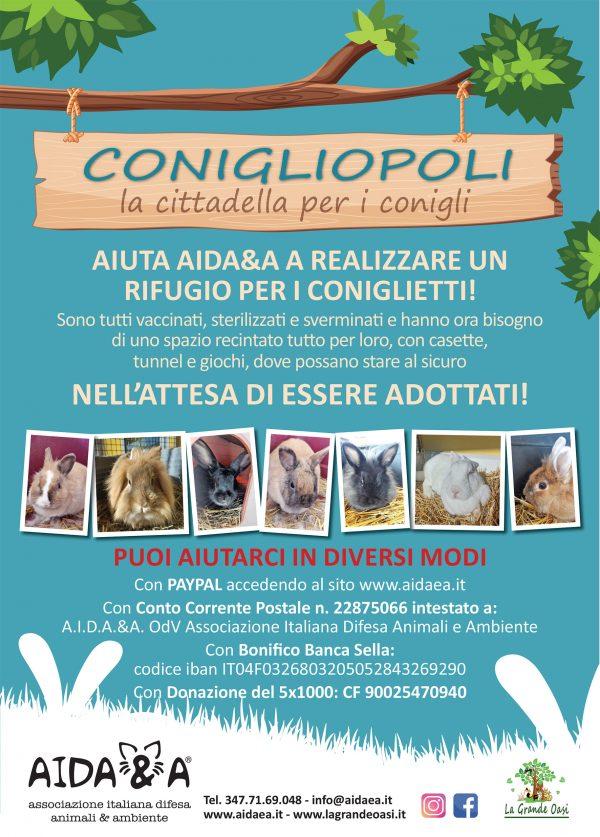 Locandina-Aidaea-Rifugio-Conigli-web