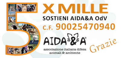 Banner-x-home-page-sito